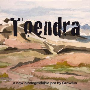 GF - Toendra promo 01 (003) (Large)